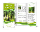 Rays of light through a beautiful green forest Brochure Templates