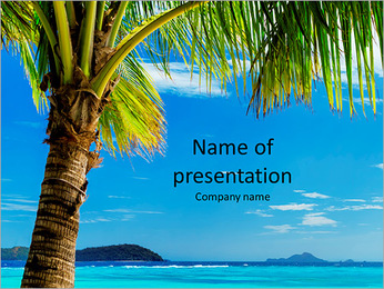 Incredibly beautiful beach in an exotic location and a palm tree PowerPoint Template