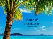 Incredibly beautiful beach in an exotic location and a palm tree PowerPoint Templates