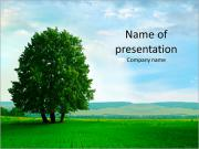 Beautiful green meadow and a very large tree PowerPoint Templates