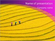 Rizières en terrasses - trois femmes visitent leurs champs de riz dans Mu Cang Chai, Yen Bai, Vietnam Modèles des présentations  PowerPoint