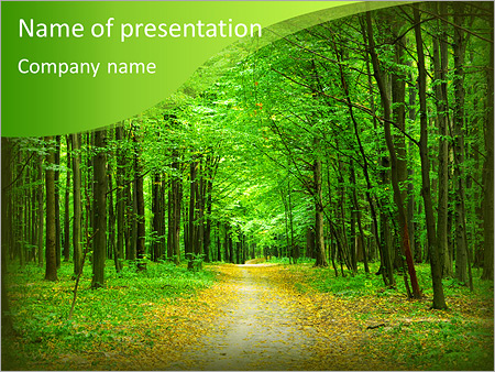 Forest powerpoint template smiletemplates beautiful green forest in summer powerpoint template toneelgroepblik Image collections