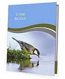 Thirsty bird on the river bank. Presentation Folder