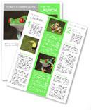 Red-eye tree frog Agalychnis callidryas in terrarium Newsletter Template