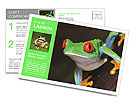 Red-eye tree frog Agalychnis callidryas in terrarium Postcard Template