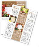 Fresh Organic Vegetables and Spices on a Wooden Background and Paper for Notes. Open Notebook and Fr Newsletter Template