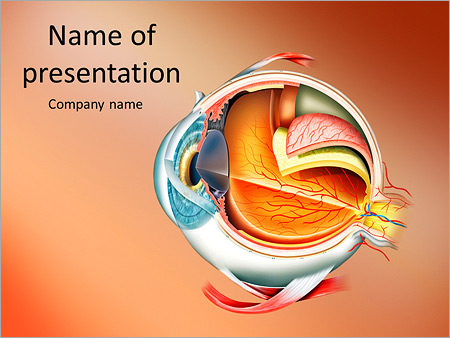 Anatomy Of The Eye Powerpoint Template Backgrounds Google Slides