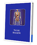 Man skeleton with internal organs. 3 D digital rendering. Presentation Folder