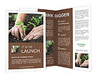 Planting a tomatoes seedling Brochure Templates
