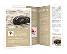 US Dollars and Computer Mouse Brochure Templates