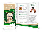 A cute chihuahua with his paws on his head covering his ears Brochure Templates
