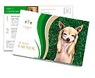 A cute chihuahua with his paws on his head covering his ears Postcard Template