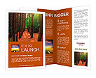 A path, bordered by tall trees runs through a lush, green forest with bright sun-rays shining throug Brochure Templates