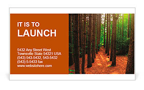 A path, bordered by tall trees runs through a lush, green forest with bright sun-rays shining throug Business Card Template