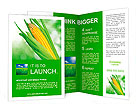 Corn field Brochure Templates