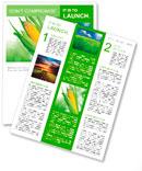 Corn field Newsletter Templates