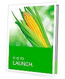 Corn field Presentation Folder