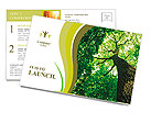 Forest trees. nature green wood sunlight backgrounds. Postcard Templates