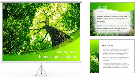 Фон презентации powerpoint природа