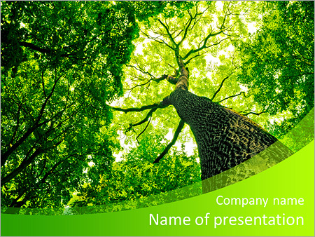 Green Business Cards Templates Free