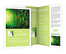 Bamboo Forest Brochure Templates