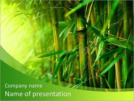 Tropical rainforest powerpoint template bellacoola jungle powerpoint template smiletemplates powerpoints templates toneelgroepblik Gallery