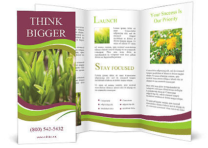 0000090001 Brochure Template