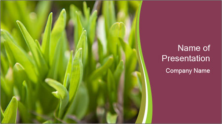 Green shoots of grass background PowerPoint Template