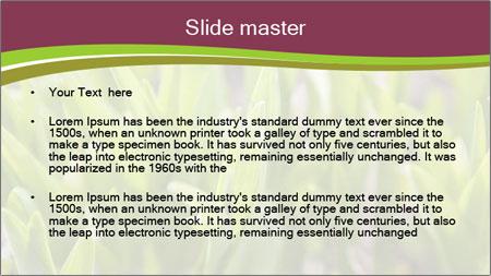Green shoots of grass background PowerPoint Template - Slide 2