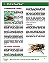 0000090006 Word Template - Page 3