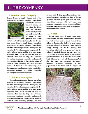 0000090027 Word Template - Page 3