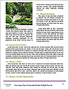 0000090027 Word Template - Page 4