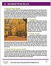 0000090027 Word Template - Page 8