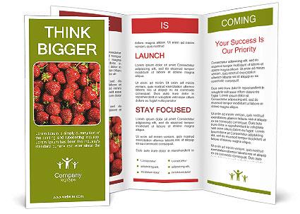 0000090028 Brochure Template
