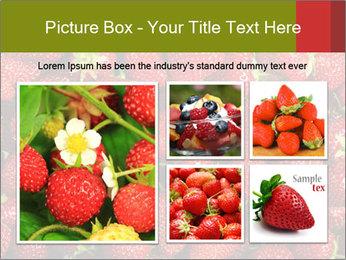Sweet Strawberries PowerPoint Template - Slide 19