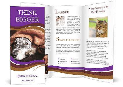 0000090030 Brochure Template