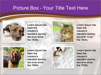Sick Dog PowerPoint Template - Slide 14