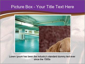Sick Dog PowerPoint Template - Slide 15