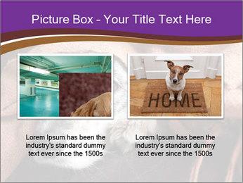 Sick Dog PowerPoint Template - Slide 18