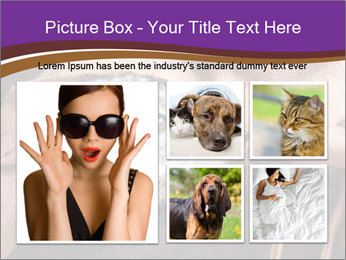 Sick Dog PowerPoint Template - Slide 19