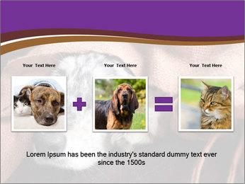 Sick Dog PowerPoint Template - Slide 22
