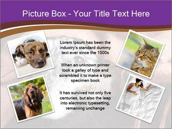 Sick Dog PowerPoint Template - Slide 24