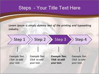 Sick Dog PowerPoint Template - Slide 4