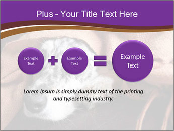 Sick Dog PowerPoint Template - Slide 75