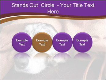 Sick Dog PowerPoint Template - Slide 76