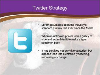 Sick Dog PowerPoint Template - Slide 9