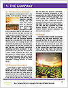 0000090034 Word Template - Page 3