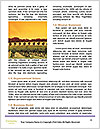 0000090034 Word Template - Page 4