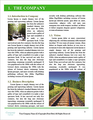 0000090040 Word Template - Page 3