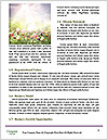 0000090043 Word Template - Page 4